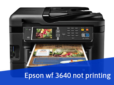How to Fix Epson WF-3640 Not Printing Problem